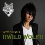wild wolf のコピー